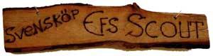 Scout @ EFS missionsförening i Svensköp